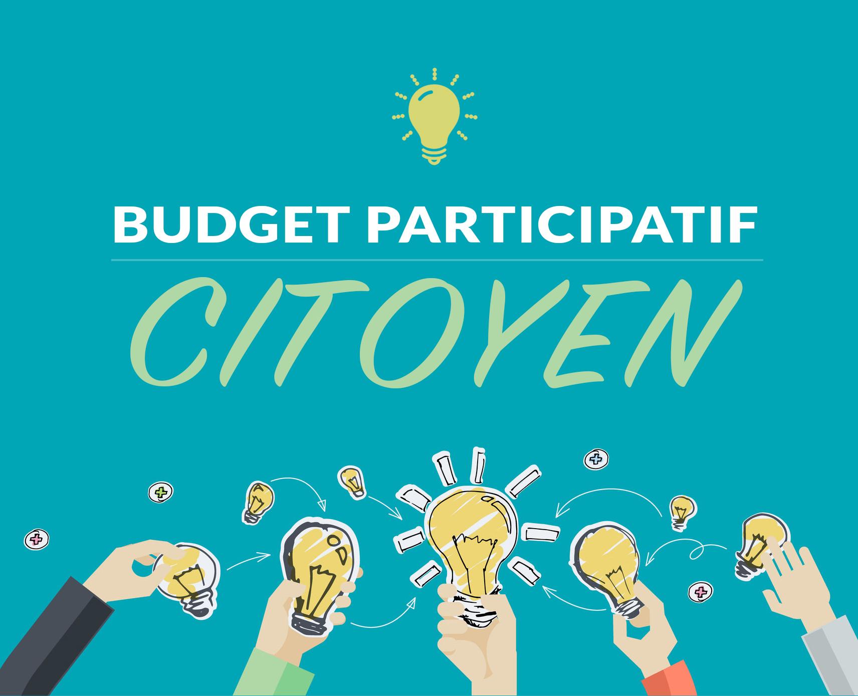 Budget_participatif.jpg (659 KB)